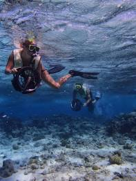 And, more snorkeling in Aruba!